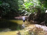 Tom in  Rio Platanares