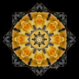 * 14. Gold Rose On Gray Kaleidoscope, Two