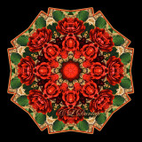 * 2. Holiday Rose With Gold Design Fabric 2 Kaleidoscope