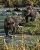 Alaska: 10 Days in 100 Images