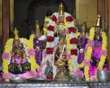 Sri Maragathavalli Thayar Sri Vilakkoli Emperuman Navarathiri Uthsavam Day3