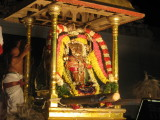 thiruvahindrapuram_manavala_mamunigal_uthsavam__day_4_evening__c