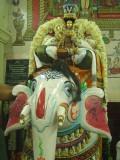 Maamunigal 6th and 7th day utsavam at Thiruvahindrapuram