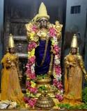 Sri Perarulalan Thula Masa Amavasai Purappadu - 2013