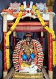 Sri Koorathazwan Varushothsavam day7 - Murali Kannan thirukolam - Pavazak kal chapparam