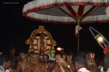 Sri Perarulalan Rajakula Theppothsavam - Evening Theppam & Veedhi Purappadu