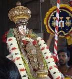 Fifth Day utsavam at Sriperumpudur