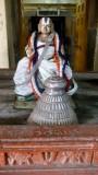 Kaatumannar Koil -Sriman Nathamunigal Tiruavatara Utsavam-Day 2