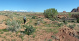 Trail into Courthouse Wash, Arches NP