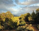 Camp in pinyon juniper