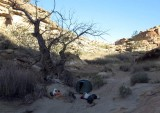 Campsite in Swap Canyon wash (hoping we don't get any overnight rain!)