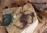 Cowboy camp artefacts