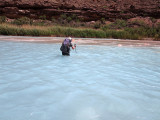 A deep wade across the turquiose Little Colorado