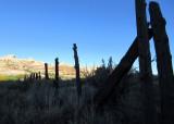 Salt Creek canyon