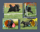 Nelling 8x10 2012