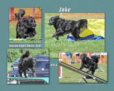 Nelling 8x10 Jake
