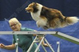 TMAC AKC Agility Trial, May 2-3, 2015