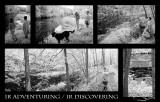 IR Discovering
