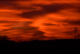 November Sunrise Abstract