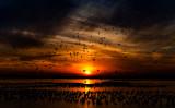 Loess-Bluffs Sunset