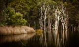 Mawbanna, Tasmania