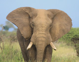 Southern Africa 2014