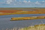 Saltvandssøen ved den dansk-tyske grænse