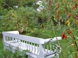 Haven - The garden