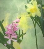 Spring Flowers by Tana, April, 2014