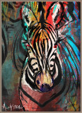 Zebra by Mandy -- December 2014