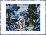 White Tiger By Steve, January, 2015 - In Memoriam