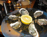 Oysters fines clairs