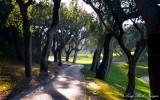 cart path