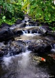 small waterfalls, Fairmont Orchid, Hawaii