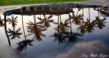 Fairmont Orchid Hotel Reflection, Big island, Hawaii