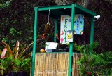 Hi Tech Fruit Stand, Kaloko Drive, Kaloko, Big Island, Hawaii