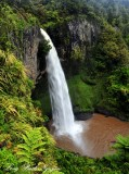 Bridal Veil Falls, Pakoka River, Waikato, New Zealand
