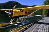 Doug's Yellow Beaver, Eagle Nook Resort, Vernon Bay, Vancouver Island, Canada