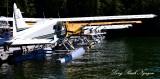 DHC-2 Beaver floatplane, Eagle Nook Resort, Canada
