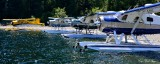DHC-2 Beaver Floatplanes on Nahmint Lake Vancouver Island Canada