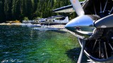 Me and the Beavers Nahmint Lake Vancouver Island Canada