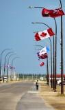 Here come Nancy Churchill Canada