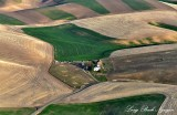 Farm in Palouse Hills, Eastern Washington State