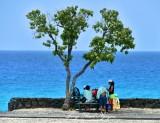 Little Shade at Maniniowali Beach, Kailua-Kona, Big Island, Hawaii