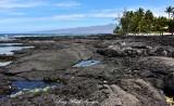 Lava Field and Beach at Puako Hawaii