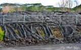 Pahoa Lava Flow at Landfill, 2014-2015 Flow, Pahoa Hawaii