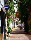 Walking the dog,  Calle Aduar, Marbella,  Spain