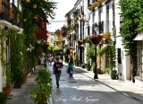 Homes and Plants on Calle Ancha, Marbella, Spain