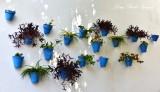 Blue Flower Pots, Marbella, Spain 184