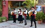 Cortijo de Cortes musician